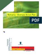 Microsoft Power Point - Biomasa 2009 NL