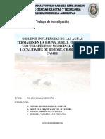 AGUAS TERMALES.pdf