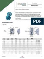 RPRCP21STD110-Clapet Clasar Version Standard