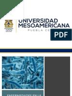 enfermedades en la piel por bacterias.pptx