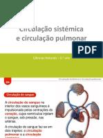 ctic6_em_apresentacaoeletronica_g4.pptx