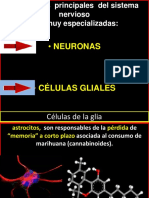 2016 neuronas.pptx
