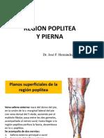 POPLITEA Y PIERNA 2018.ppt
