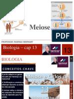 Aula de Meiose pdf.pdf