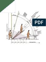 dimensiuni scari trepte