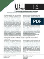 Jornal Toque da Ciência 3ª edição