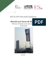 étude socio-eco des Puces Euromed.pdf