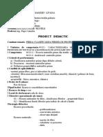 Proiect Didactic - Fibra-clasif Fibrelor-propr Fizice Fibre