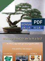 BONSAI BaSICO.pdf