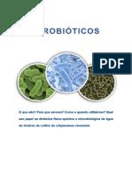 APOSTILA-CURSO-PROBIÓTICOS.pdf