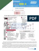 CL_UNMSM 2019-II DOM0IkZRmbvXbbi.pdf