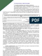 Direito Processual Constitucional