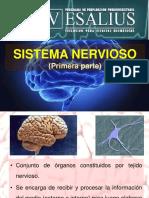 SISTEMA_NERVIOSO_I.pdf