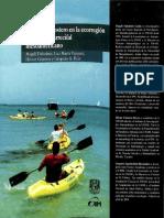 El turismo costero Xcalak.pdf
