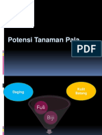 4. potensi Pala.pptx