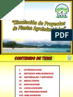 Simulacion de Proyectos de Plantas Agroindustriales