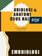 Embriologi & Anatomi Usus Halus