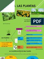 Unidad 3 Las Plantas (1)