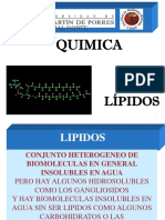 Clase Lipidos