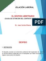 DESPIDO ARBITRARIO_AUTONOMA