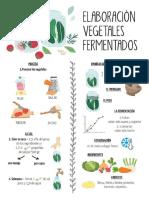vegetales-fermentados-infografía
