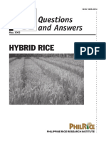 hybrid-rice-q-and-a