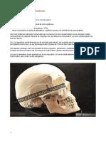 Occluso-cours-1-PDF.pdf