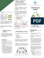 53 cartilla rotacion cultivo.pdf