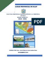 PLAN VIAL MUNICIPALIDAD PROVINCIAL DE ISLAY.pdf