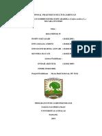proposal kuljar-1.docx