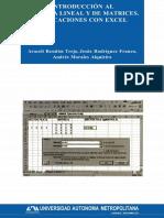 ALGEBRA LINEAL CON APLICACIONES PARA EXCELL.pdf