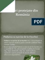 Păduri Protejate Din România