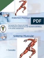 Aula de Anatomia 5 Musculos-2