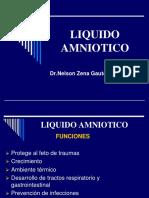 liquido_amniotico