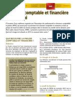 La-fraude-comptable-et-financière-mai-2014.pdf