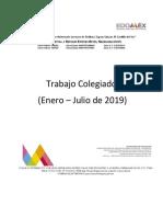 Desarrollo Del Trabajo Colegiado Del Segundo Semestre Del Ciclo Escolar 2018