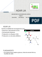LIA Presentacion Microbiología