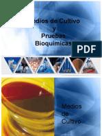 Medios de Cultivo y Pruebas Bioquimica