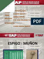 EXPOSICION-ESPIGO-MUÑON
