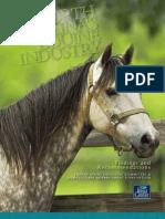 Equine Study 050809