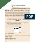 Potencial de membrana y potencial de acción.docx