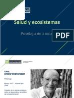 Modelo Ecológico