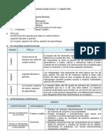 Unidad Didactica Matematica 5to 2019