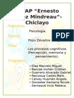 LOS PROCESOS COGNITIVOS-1.docx