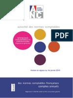 Recueil_des_normes_comptables_janvier_2019.pdf