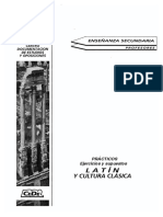 TEMARIO practico_latin.pdf