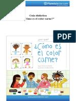 Color Carne Guía Didáctica