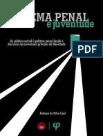 sistema penal e juventude - livro.pdf