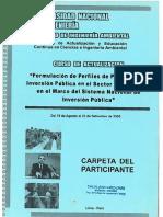 Formulacion PIP SNIP.pdf