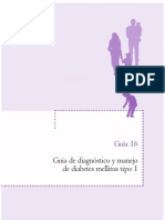 Guias16 Diabetes Tipo 1